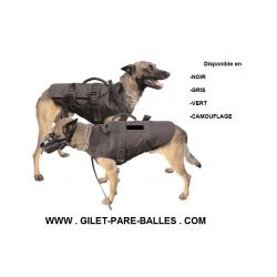 Gilet pare balles pour chien - Niveau IIIA